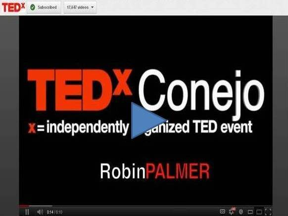 TEDx Robin Palmer - The Most Important Minutes of the Day-Video